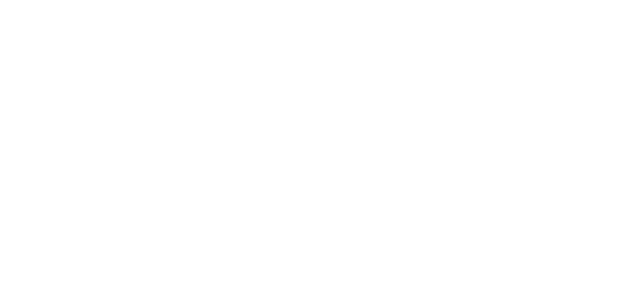 Lion Gaming & Travel Group